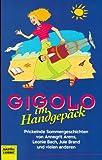 Gigolo im Handgepäck - Annegrit Arens