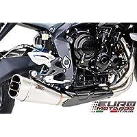 Triumph Street Triple 675 2013-2014 Zard Terminale Scarico Basso Short Inox Exhaust