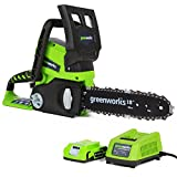 Greenworks Tools 2000007-a Battery Powered Chainsaw – 24V