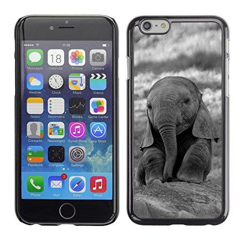 Graphic4You Niedlich Baby Elefant Tier Design Harte Hülle Case Tasche Schutzhülle für Apple iPhone 6 / 6S