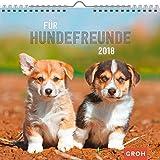 Für Hundefreunde 2018: Dekorativer Wandkalender mit Monatskalendarium | Maße (BxH): 21x20cm