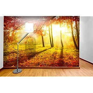 PVC Fototapete – ECO Wandbild Selbstklebende Tapete – 3D Vinyl Wandsticker - Park im Herbst SW093(250x175CM)