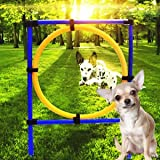 SLB Works Brand New Pet Dog Jumps Training Agility Equipment Show Obedience Outdoor Puppy