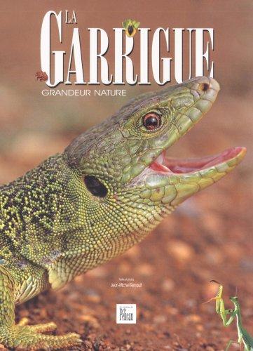 La Garrigue, grandeur nature