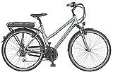 Prophete Damen E-Bike Navigator 2.1 24-Gang Acera, Platingrau/Matt, 50 cm, 52525-0111