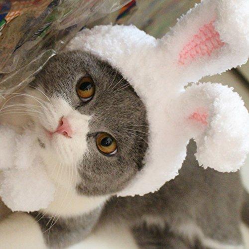 zenmütze Handarbeit Mütze für Hunde, Haustier, Welpen Winter Ostern Kostüm Cartoon Hase Zubehör Hut ()
