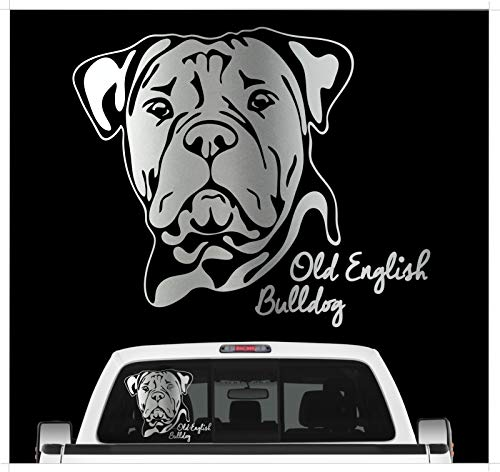 Siviwonder Auto Aufkleber Old English Bulldog Portrait Bully Hund OEB Wilsigns Hundeaufkleber autoaufkleber Hund Folie Hundemotiv (Silber) (Vinyl-hundebox)