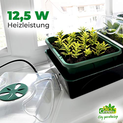 Bio Green Hollandia Anzuchtstation - 4