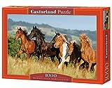 Mangalarga Marchadors - 1000 Teile - Castorland Puzzle C-101993-1