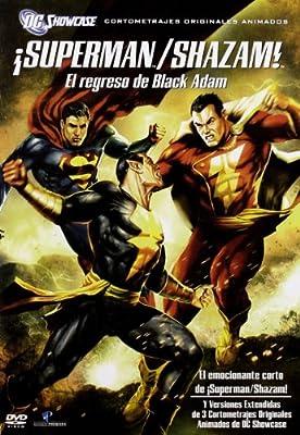 Superman / Shazam DC - The Return of Black Adam [Import mit deutscher Sprache]