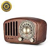 Radio FM Portatile Bluetooth Vintage Altoparlante - Aooeou Retrò Mini Legno Radiolina Usb Ricaricabile Alimentazione Elettrica Radios da tavolo, Forte Volume Lettore Musicale per TF, AUX