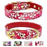 TEEMERRYCA Halsband für Kleine Hunde, modisches Muster, für Welpen, Katzen, bequemes Mikrofaser-Gepolstertes Halsband, Verstellbare Halsbänder für Hunde