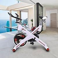 Riscko Bicicleta regulable de ciclo indoor con volante de inercia de 24 kilos (blanco)