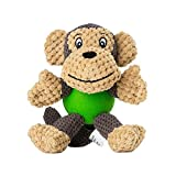 EEToys Puppy Squeaky Dog Toys with Rubber Ball Body for Small Dogs Keep Your Dog Happy (Monkey)
