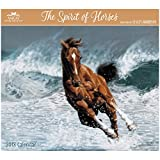 Lesley Harrison - The Spirit of Horses 2018 Calendar: With Envelope