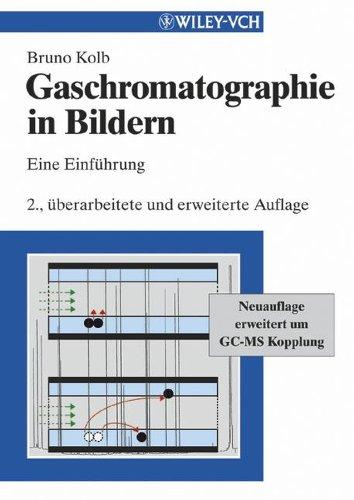 Gaschromatographie in Bildern: Eine Einfhrung (German Edition): Eine Einfuhrung