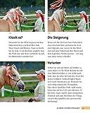 Bodenarbeit mit Pferden: Abwechslungsreiche Übungen, die Spaß machen - 8