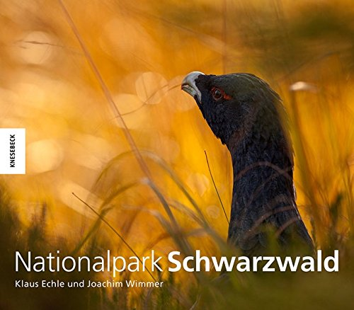 Nationalpark Schwarzwald - 138 Handy