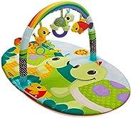 Infantino Explore & Store Activity Gym (Turt