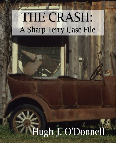 The Crash:  A Sharp Terry Case File (English Edition)