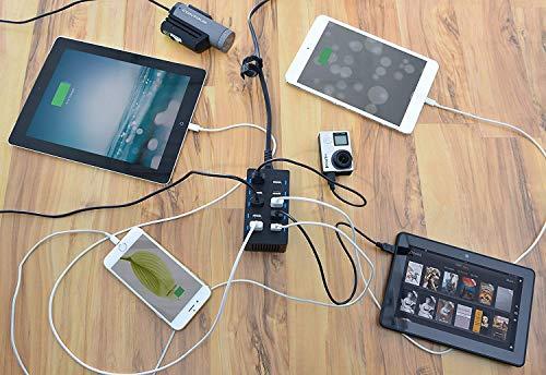 Sabrent 60 Watt (12 Amp) 10-Port [UL Certified] Family-Sized Desktop USB Rapid Charger. Smart USB Ports with Auto Detect Technology [Black] (AX-TPCS)