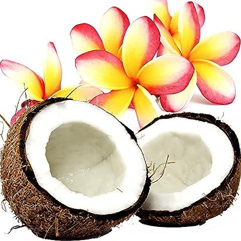 Kokosnuss Frangipani Rollen Sie auf Parfüm Duft Öl EXTRA STARK konzentrieren 2 x 12ml