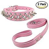 Newtensina Mode Hundehalsband und Leinen Set Weich Nieten Halsband mit Hunde Leinen für Kleine Hunde Mittlere Hunde