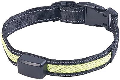 infactory Hundehalsband: LED-Leuchtband mit kinetischer Leucht-Funktion, für Mittelgroße Hunde (LED-Bänder für Hunde)