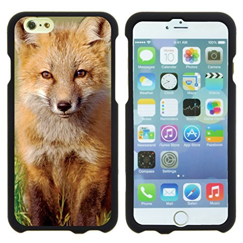 turtlearmor | kompatibel für Apple Iphone 6 Plus Schutzhülle | 6S Plus Hülle [Slim Duo] Slim Compact 2 Stück Hard Displayschutzfolie Snap auf Fall gummierter Finish auf Schwarz Tier Design -, Baby Fox Tier-design Snap