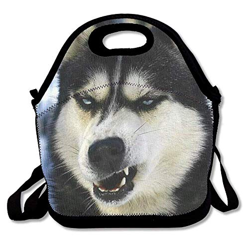 Cute Funny Black Pug Dog Neoprene Lunch Bag Insulated Lunch Box Tote for Women Men Adult Kids Teens Boys Teenage Girls Toddlers (Black) (Cute Black Teen)