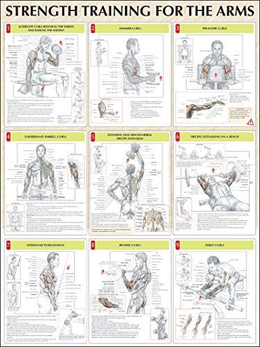 Strength Training for the Arms por Frederic Delavier