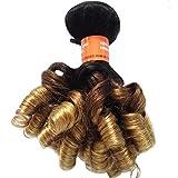 8A Brésilien Sexy Funmi Bouncy Humain Cheveux Tissage 1B/4/27# Ombre Cheveux Trame Non traité Cheveux Extensions 1 Paquet 100g, 10'