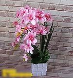JFWMZyq Künstliche Blumen Set Wohnzimmer Dekoration Topfpflanzen Orchidee Blumenstrauß Pink 50 X 30Cm.