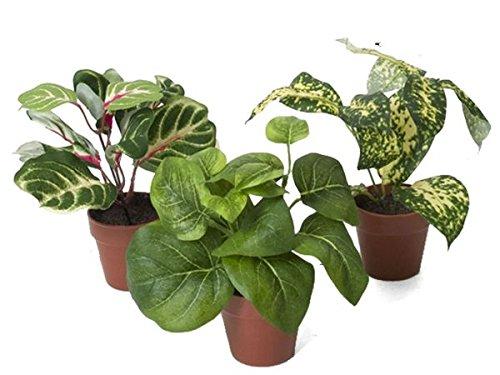 maceta-planta-artificial-poto-altura-19-diametro-7cm-4-surtido-a-elegir-1