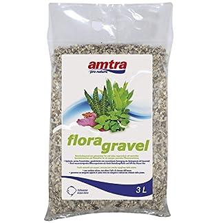 AMTRA Flora Gravel, 3 Litre 4