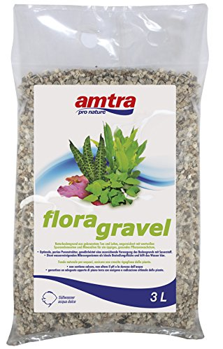 Amtra A3050378 Flora Gravel, 3 L