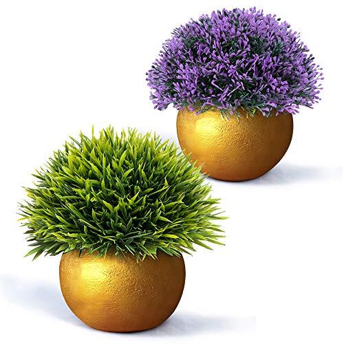 Gold-topf (Vangold Künstliche Pflanzen Kunstpflanze Kleine Gefälschte Pflanzen mit Töpfe für Zuhause/Büro Innen Decor - 2 Jahre Garantie (Gold))
