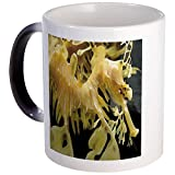CafePress - Leafy Seadragon - Unique Coffee Mug, Coffee Cup, Tea Cup