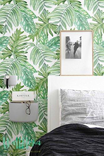 dschungeltapete Papel pintado, diseño de hojas de monstera, extraíble, hojas de papel pintado, adhesivo decorativo para pared, 53 Cm wide by 121 Cm Tall