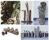 Treibholz aus den Alpen Äste Wurzeln Stämme Kunst Unikat Naturjuwel Schwemmholz Deko Driftwood zum Basteln für Künstler Möbel von MEIERLE & Söhne (Treibholz 15)