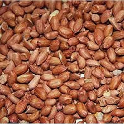 Peanuts For Wild Birds - Squirrels - Nuts - Pet Feeding - Seed - Garden Bird - Feeder by LEEWAY WOODWORK