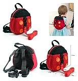 Arnés de seguridad Mochila Infantil anti-lost banda de belt-ladybug para bebé rojo mariquita Talla:pequeño