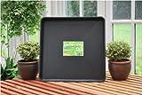 Garland Pflanzschale, klein, schwarz, quadratisch, 60 x 60 x 7 cm