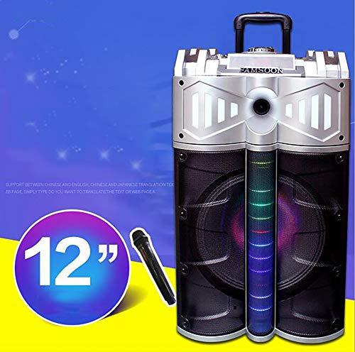 Unbekannt 12Zoll Bluetooth DJ Tragbares Musiksystem für Lautsprecher mit eingebautem Verstärker USB MP3-Player betrieben PA-Karaoke-Party Wireless Mikrof - Dj-mp3-player