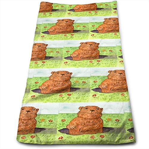 ewtretr Asciugamani Viso-Mani, Whimsical Groundhog Day out Multi-Purpose Microfiber Towel Ultra Compact Super Absorbent And Fast Drying Sports Towel Travel Towel Beach Towel Camping, Gym