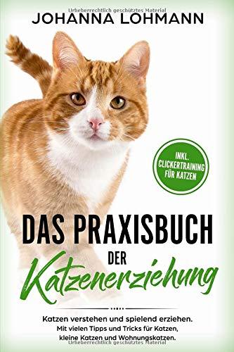 Das Praxisbuch der Katzenerziehung: Katzen verstehen und spielend erziehen. Mit vielen Tipps und Tricks für Katzen, kleine Katzen und Wohnungskatzen.