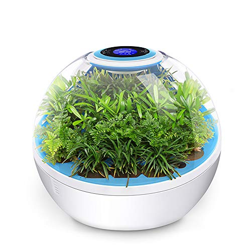 CARWORD Plants Air Purifier Mit True HEPA Filter Removing Allergens, Dust & Pollen, Smoke and Pet Dander, Smoke-Free and Pet Dander (Pet-cool Klimaanlage)