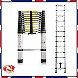Multiusos de aluminio escalera plegable telescópica de extensión retráctil DIY 3,8m de altura, 13pasos