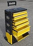ASS Profi - Caja de herramientas con ruedas (acero, 5 compartimentos y caja con tapa, muy...