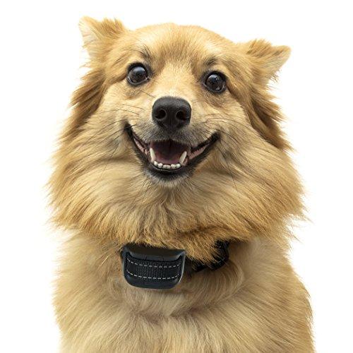 TopDog Anti-Bellhalsband mit Ton, Vibration und Sicherheits-LED für kleine, mittlere und große Hunde mit 7 verstellbaren Modi mit Ton und Vibration, kein Schock, harmlos und tiergerecht, hält Hunde davon ab zu bellen, mit Ersatzbatterie und Band (Hund Bellen Schock Kragen)